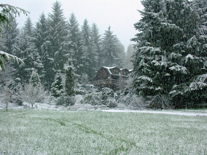 Our home. First snowfall of the winter.